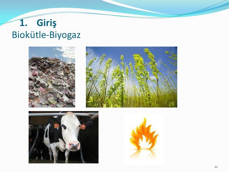 Biokütle-Biyogaz Giriş