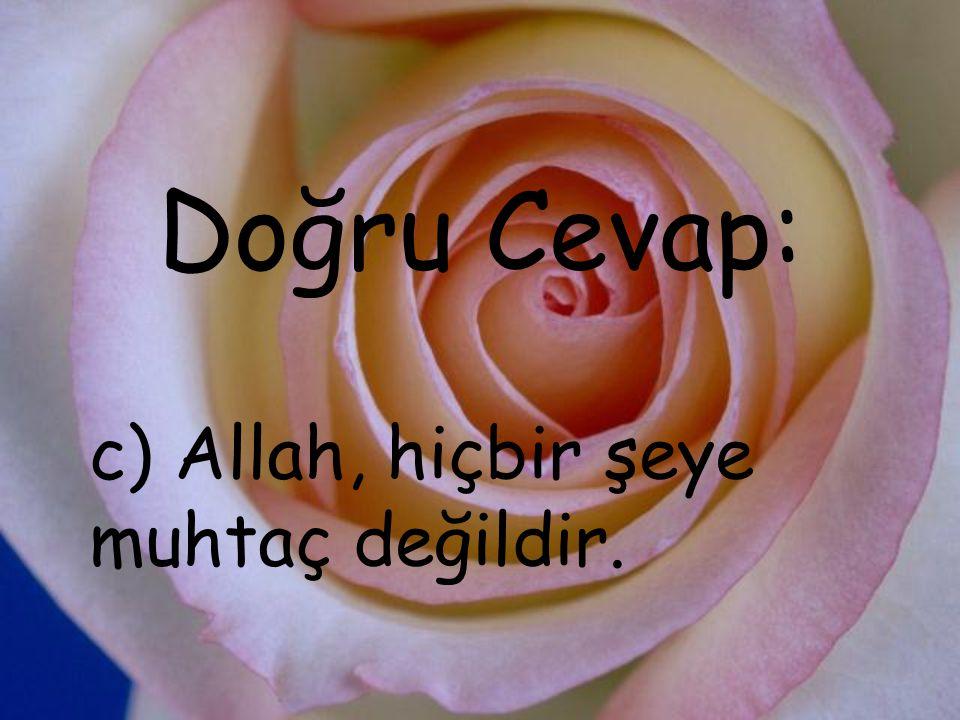 c) Allah, hiçbir şeye muhtaç değildir.