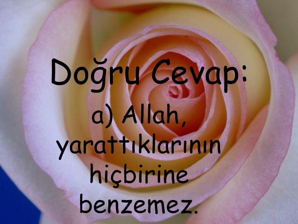 a) Allah, yarattıklarının hiçbirine benzemez.