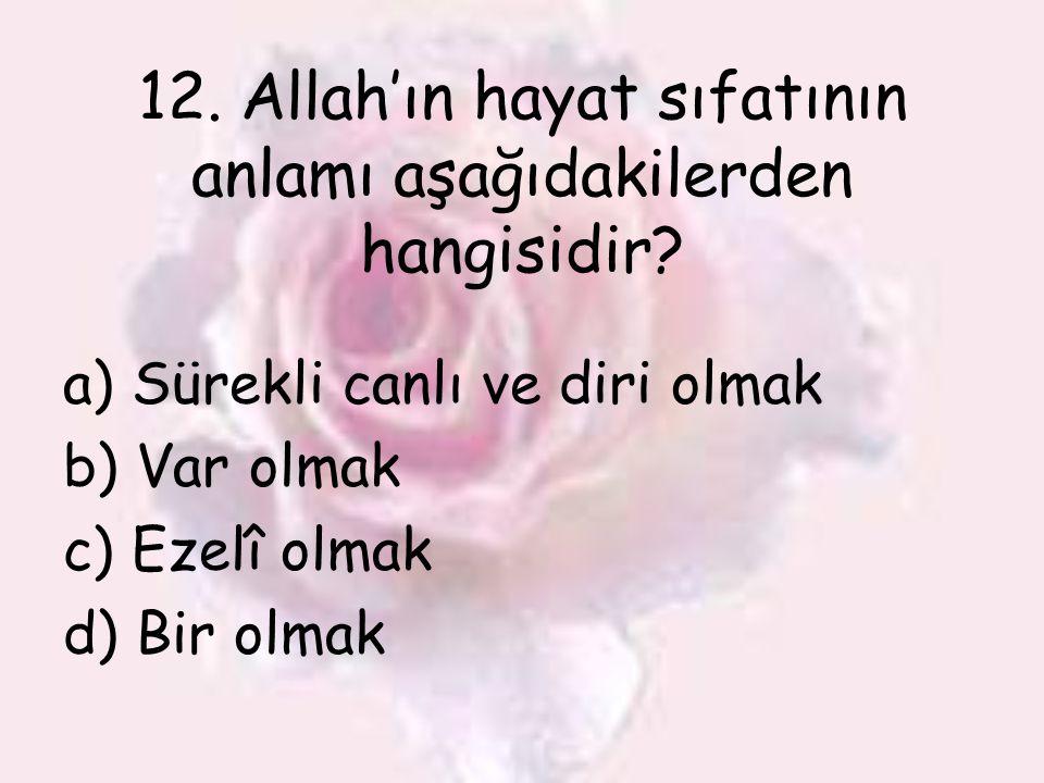 12. Allah'ın hayat sıfatının anlamı aşağıdakilerden hangisidir