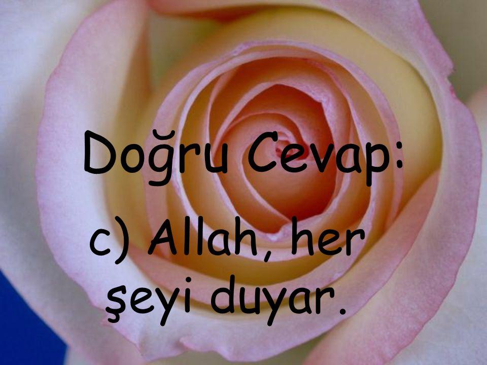 Doğru Cevap: c) Allah, her şeyi duyar.