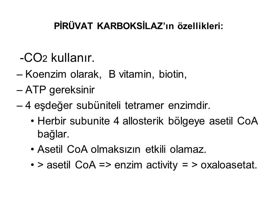 PİRÜVAT KARBOKSİLAZ'ın özellikleri: