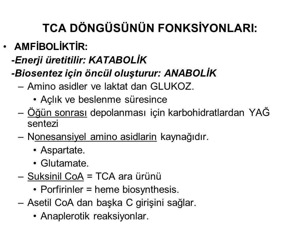 TCA DÖNGÜSÜNÜN FONKSİYONLARI: