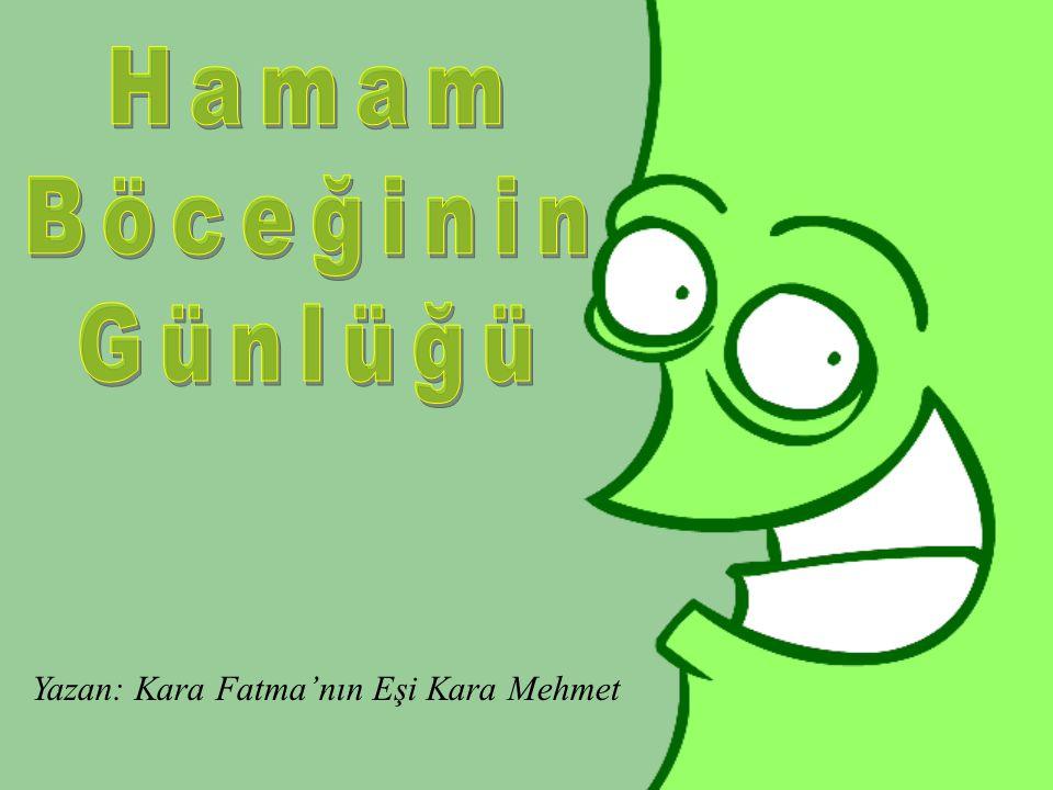 Hamam Böceğinin Günlüğü Yazan: Kara Fatma'nın Eşi Kara Mehmet