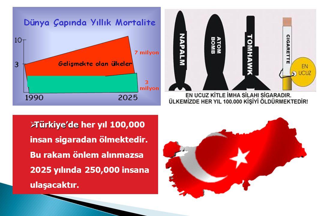 Türkiye'de her yıl 100,000 insan sigaradan ölmektedir