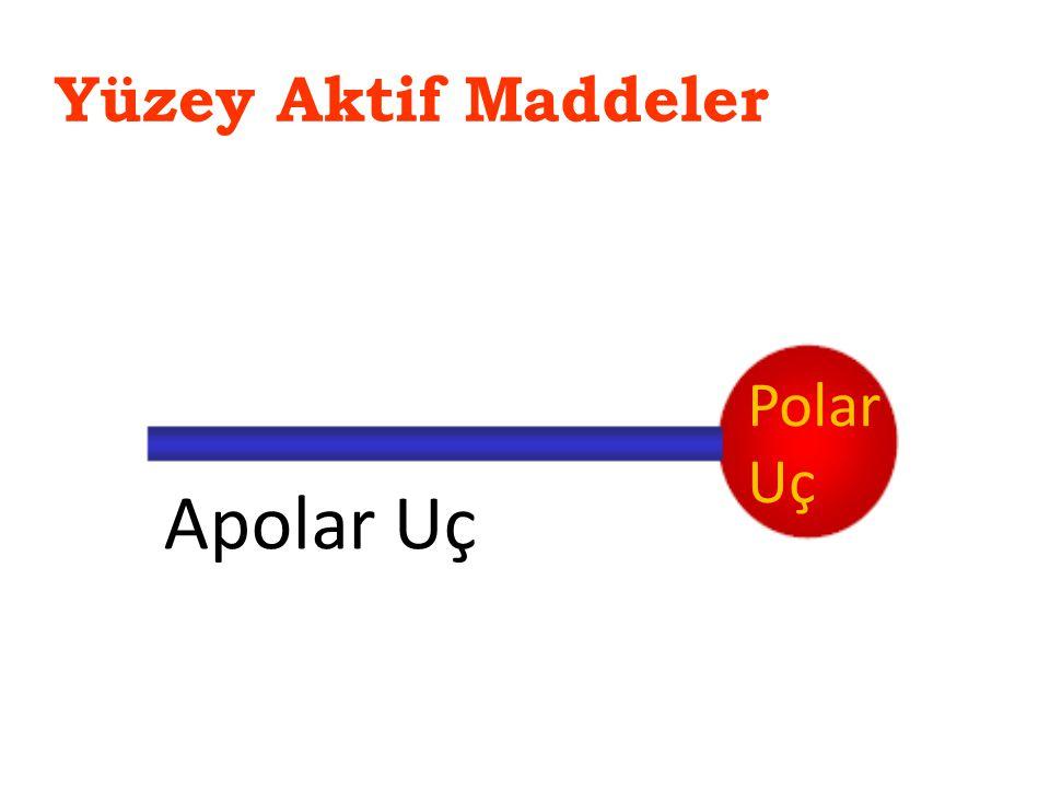 Yüzey Aktif Maddeler Polar Uç Apolar Uç
