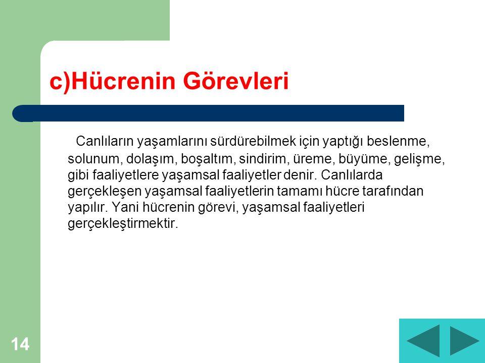 c)Hücrenin Görevleri