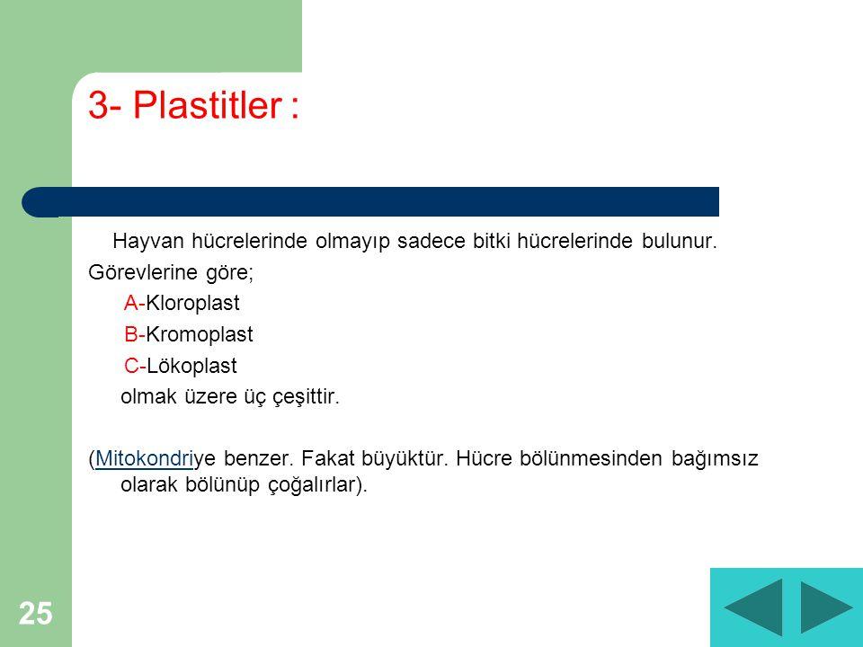 3- Plastitler : Hayvan hücrelerinde olmayıp sadece bitki hücrelerinde bulunur. Görevlerine göre; A-Kloroplast.