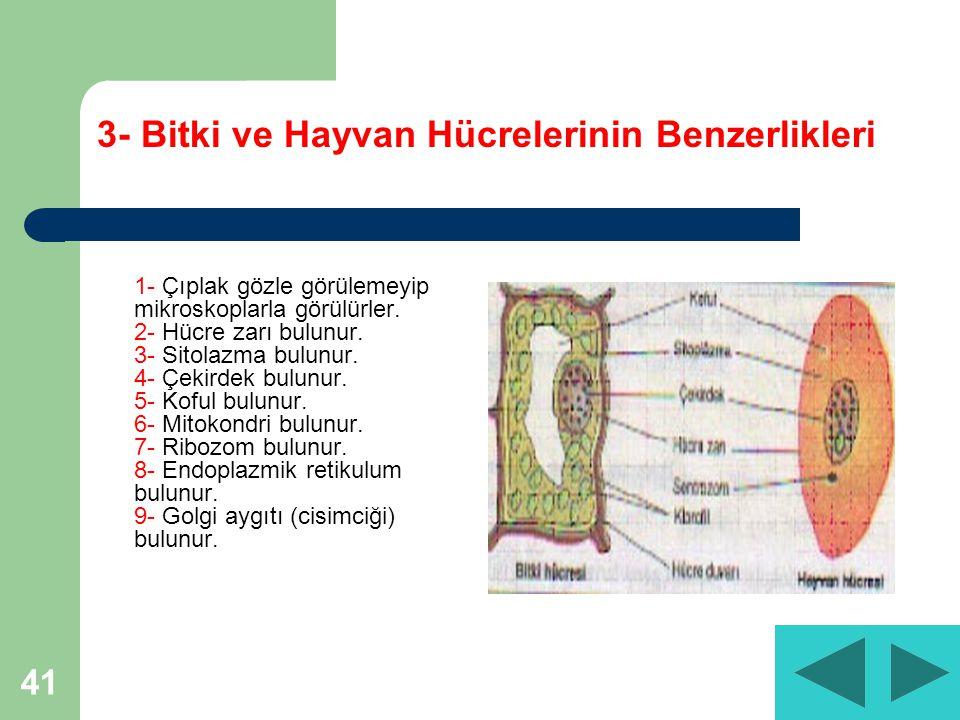 3- Bitki ve Hayvan Hücrelerinin Benzerlikleri
