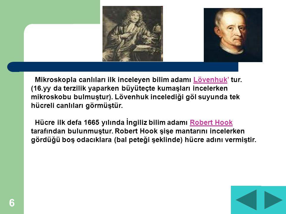 Mikroskopla canlıları ilk inceleyen bilim adamı Lövenhuk' tur. (16
