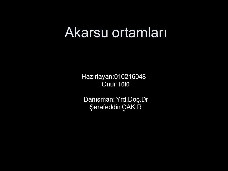 Hazırlayan:010216048 Onur Tülü Danışman: Yrd.Doç.Dr Şerafeddin ÇAKIR