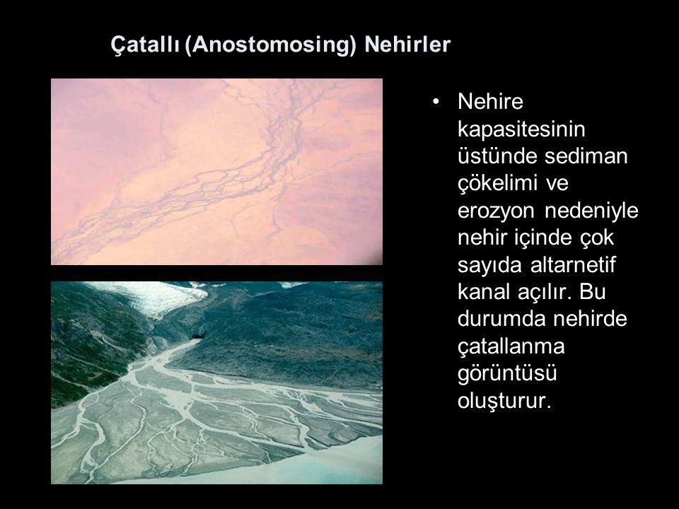 Çatallı (Anostomosing) Nehirler