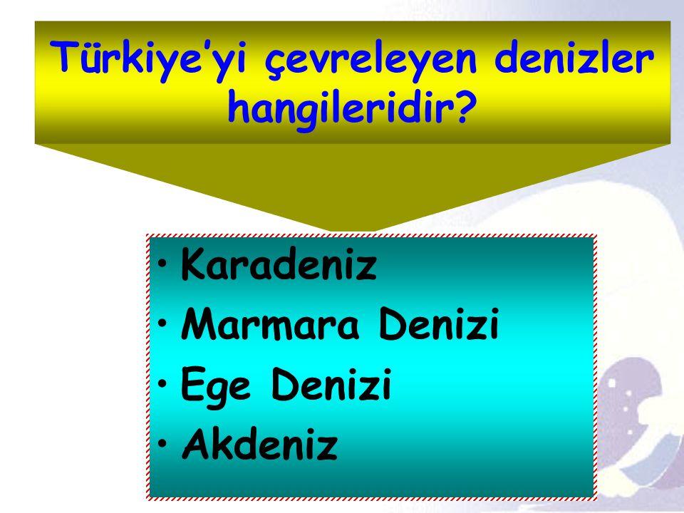 Türkiye'yi çevreleyen denizler hangileridir