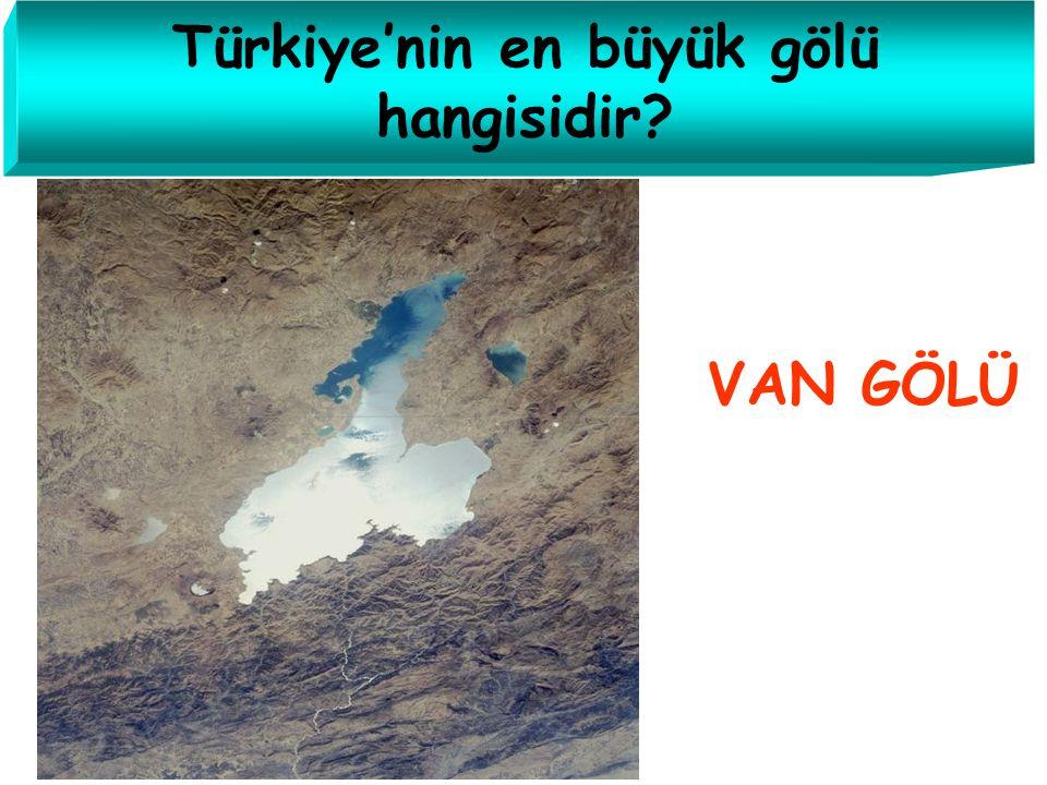 Türkiye'nin en büyük gölü hangisidir
