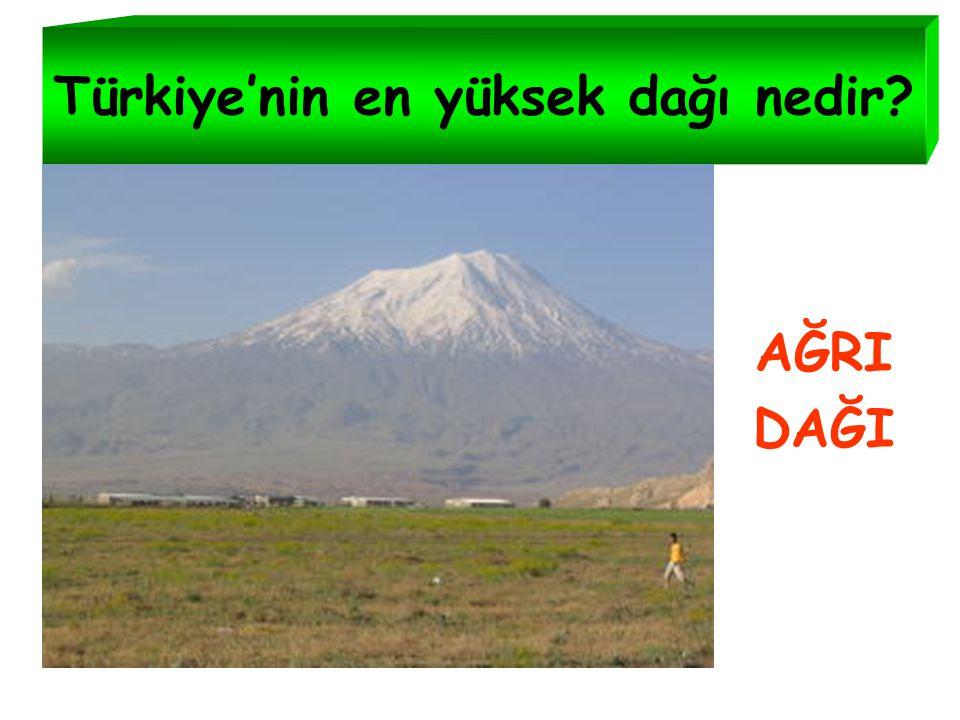 Türkiye'nin en yüksek dağı nedir