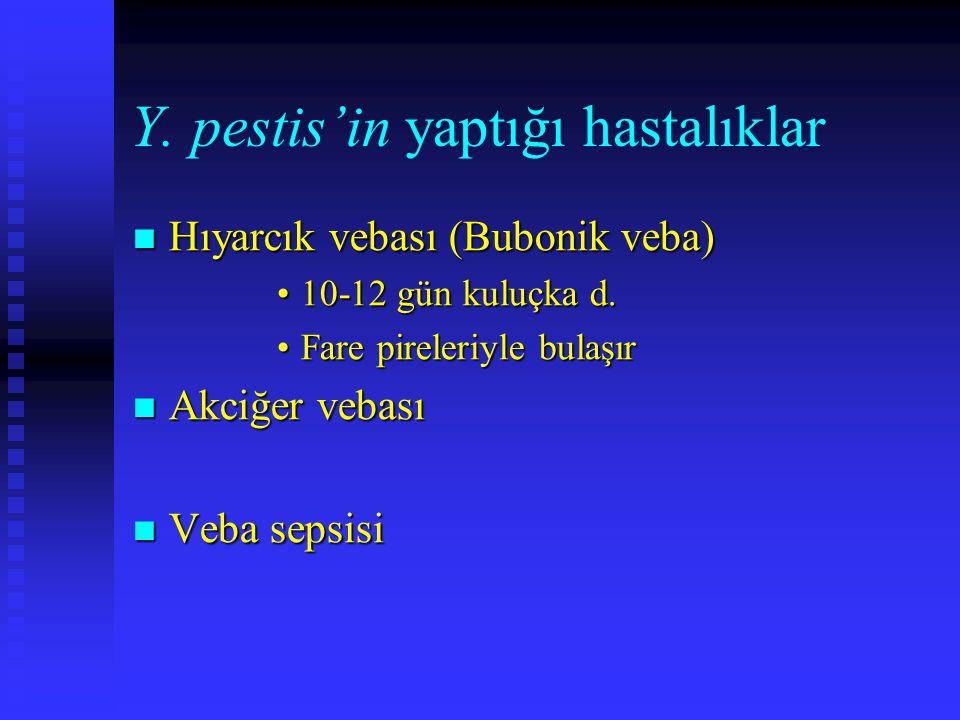 Y. pestis'in yaptığı hastalıklar