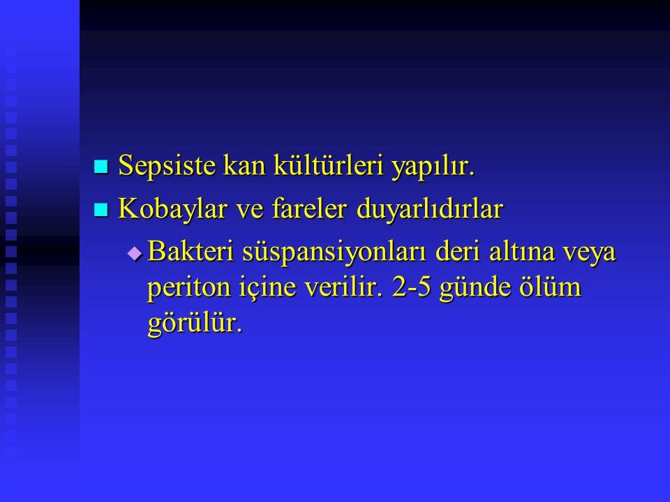 Sepsiste kan kültürleri yapılır.