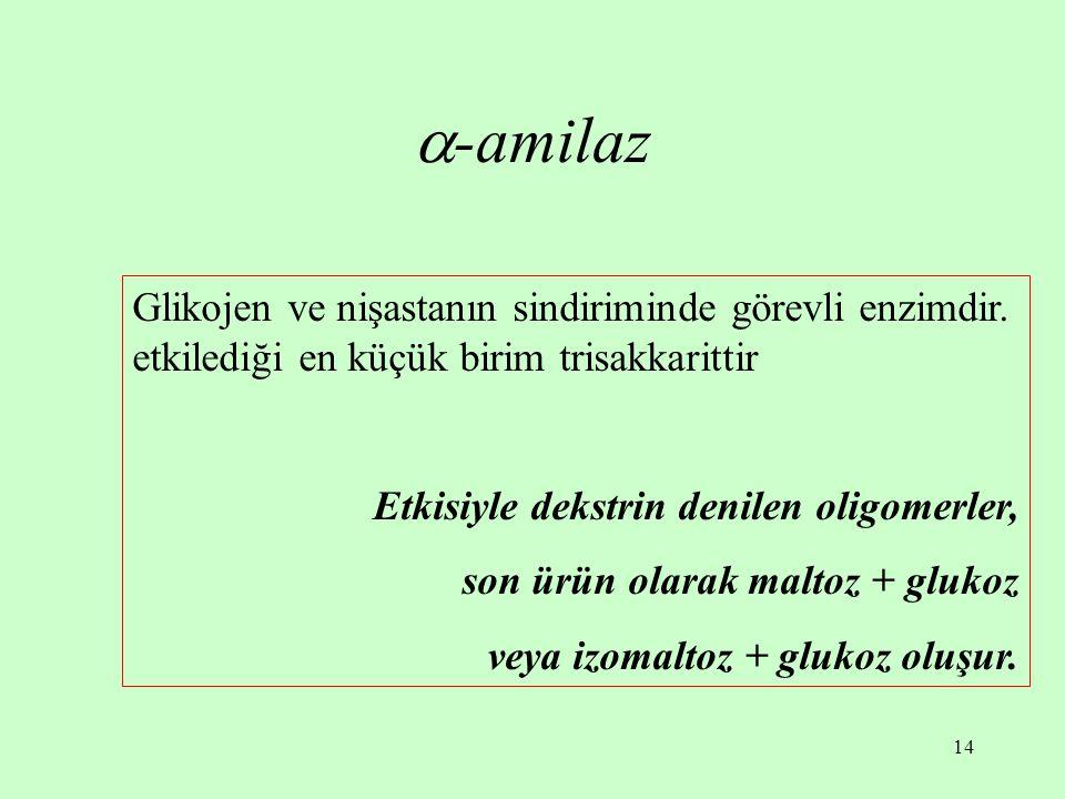-amilaz Glikojen ve nişastanın sindiriminde görevli enzimdir. etkilediği en küçük birim trisakkarittir.