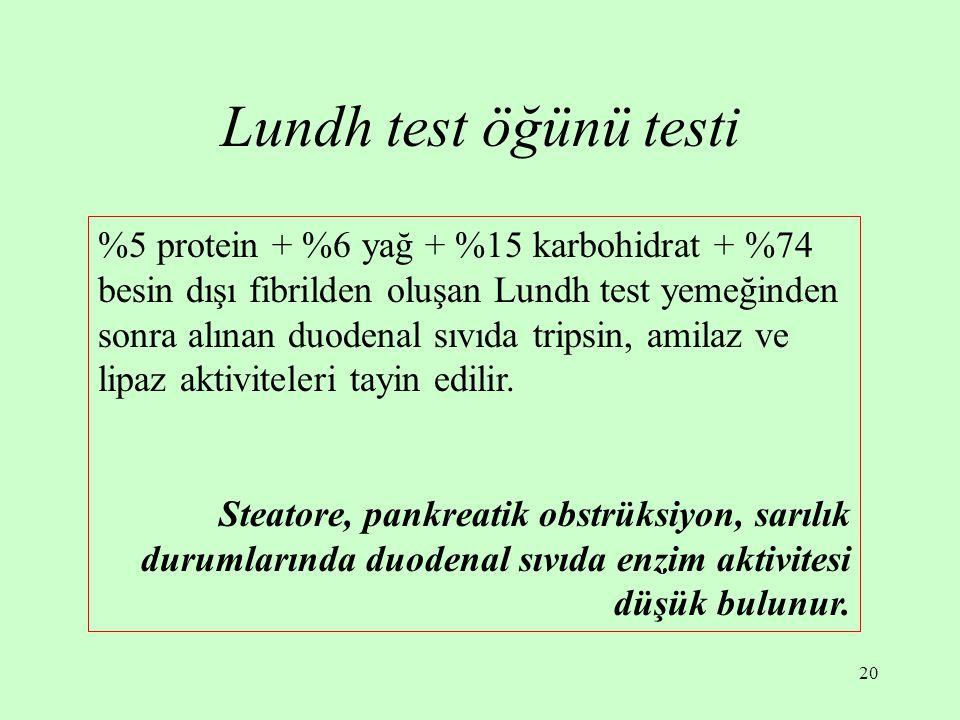 Lundh test öğünü testi