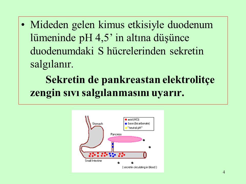 Mideden gelen kimus etkisiyle duodenum lümeninde pH 4,5' in altına düşünce duodenumdaki S hücrelerinden sekretin salgılanır.