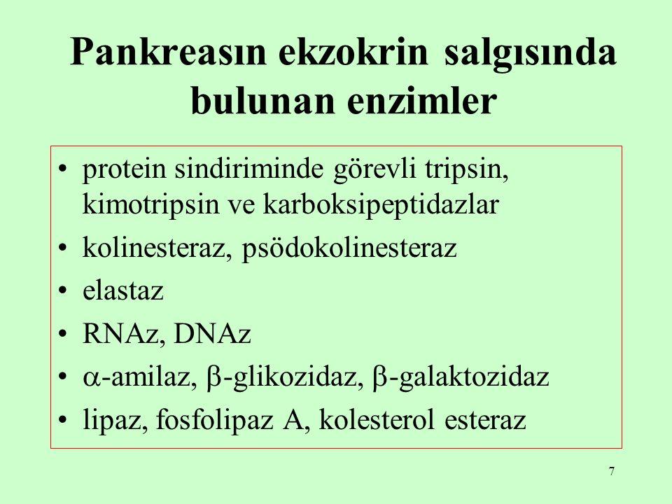 Pankreasın ekzokrin salgısında bulunan enzimler