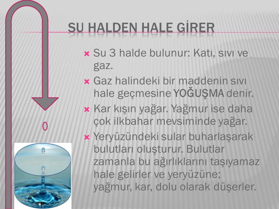 SU HALDEN HALE GİRER Su 3 halde bulunur: Katı, sıvı ve gaz.