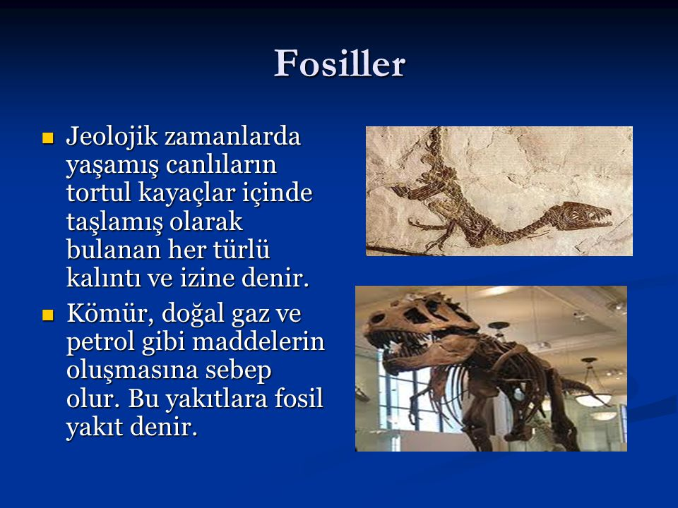 Fosiller Jeolojik zamanlarda yaşamış canlıların tortul kayaçlar içinde taşlamış olarak bulanan her türlü kalıntı ve izine denir.