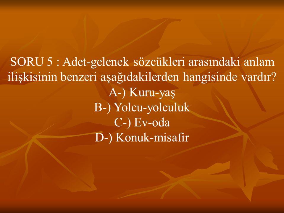 SORU 5 : Adet-gelenek sözcükleri arasındaki anlam ilişkisinin benzeri aşağıdakilerden hangisinde vardır