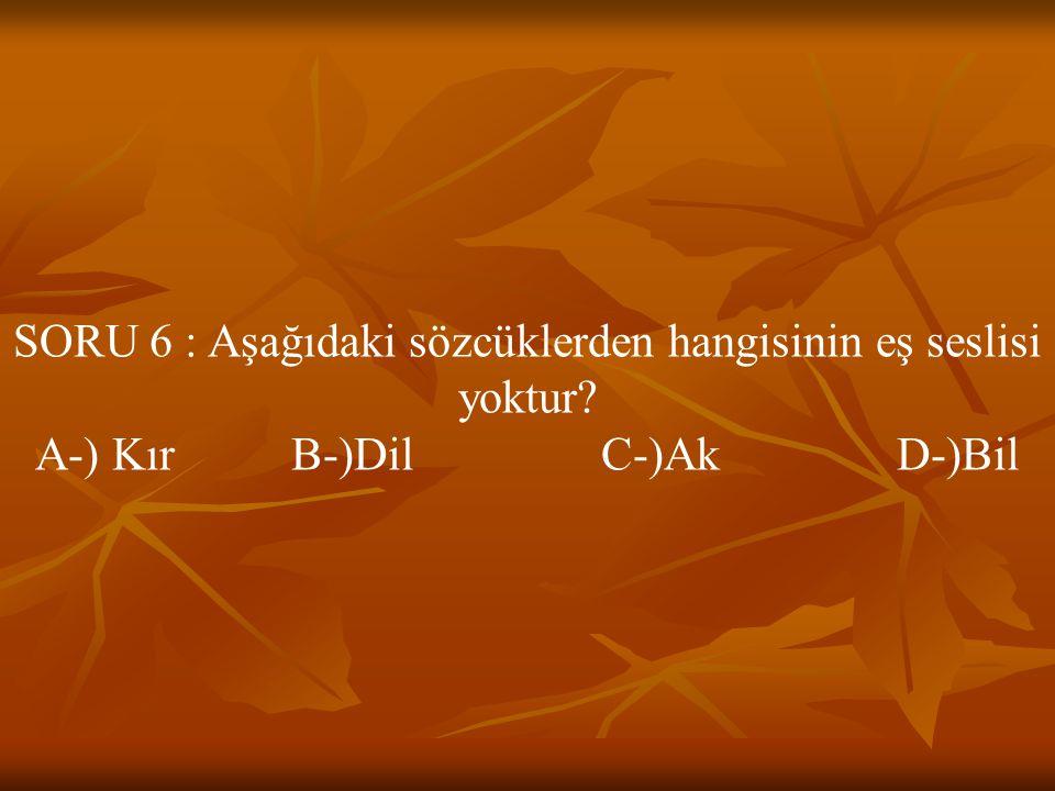 SORU 6 : Aşağıdaki sözcüklerden hangisinin eş seslisi yoktur