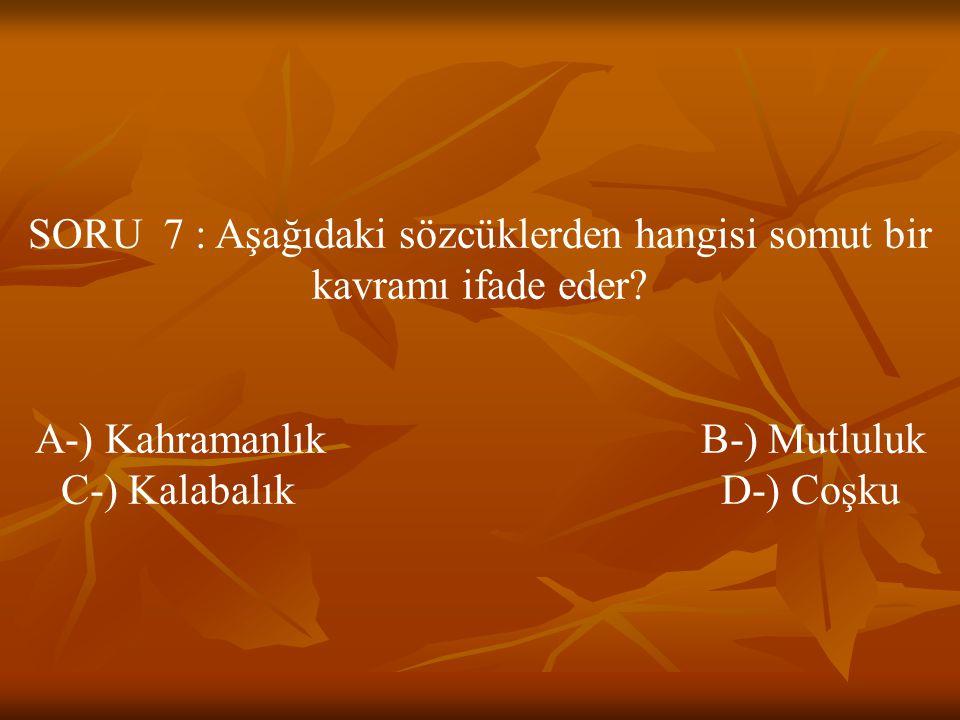 SORU 7 : Aşağıdaki sözcüklerden hangisi somut bir kavramı ifade eder