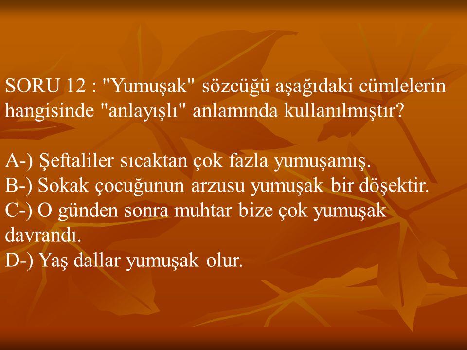 SORU 12 : Yumuşak sözcüğü aşağıdaki cümlelerin hangisinde anlayışlı anlamında kullanılmıştır