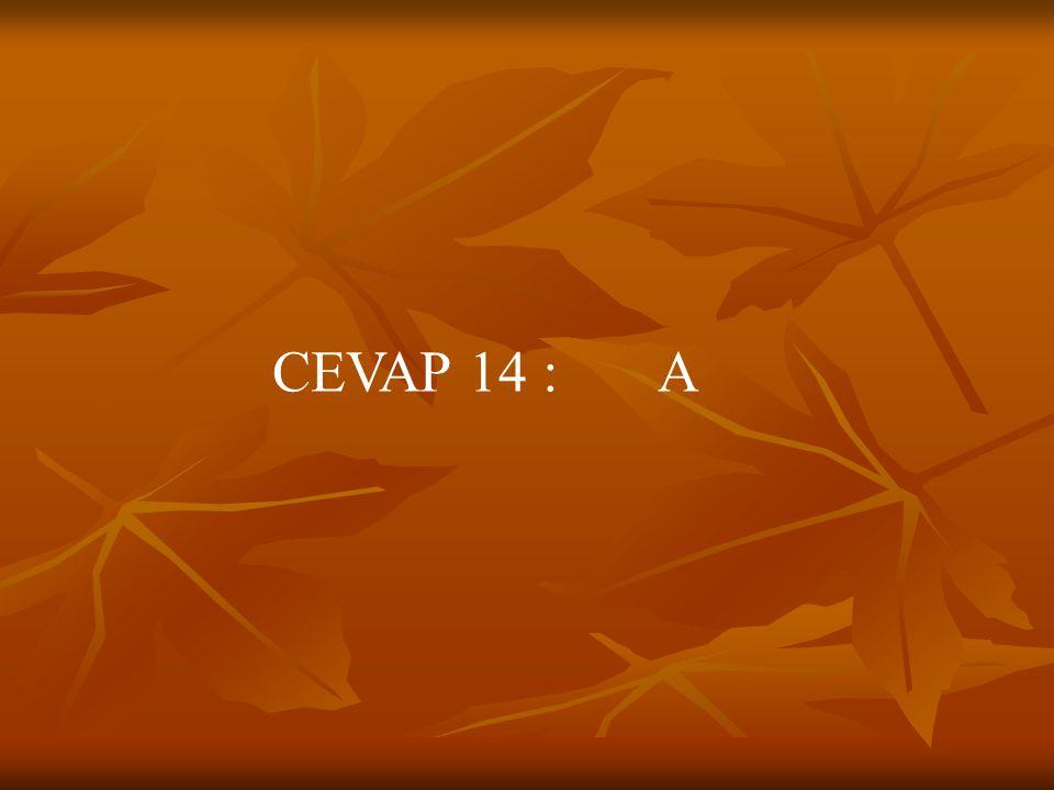 CEVAP 14 : A