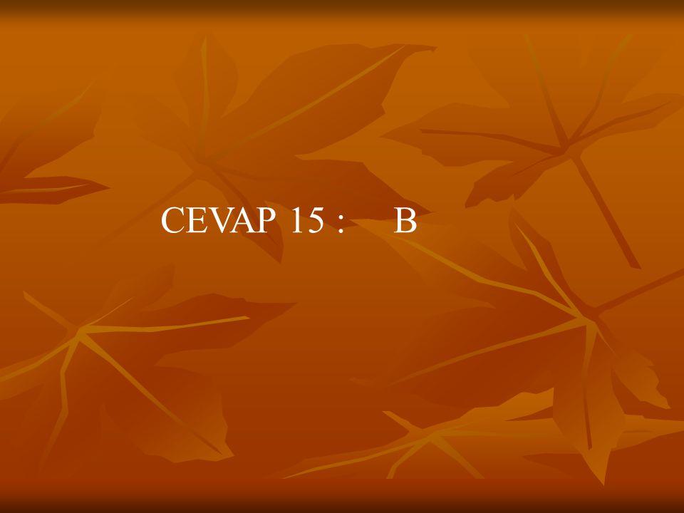 CEVAP 15 : B