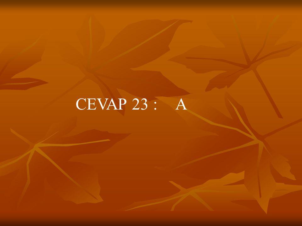 CEVAP 23 : A