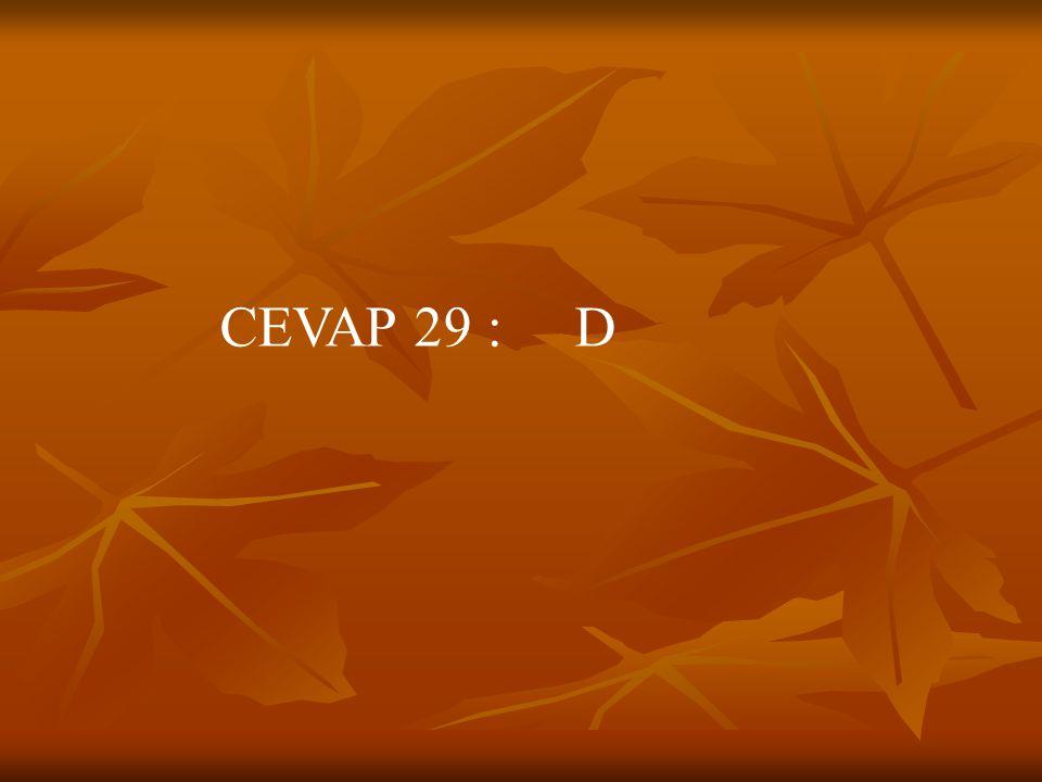 CEVAP 29 : D