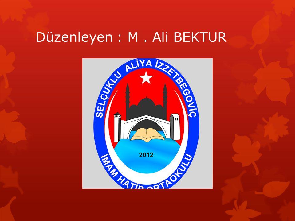 Düzenleyen : M . Ali BEKTUR