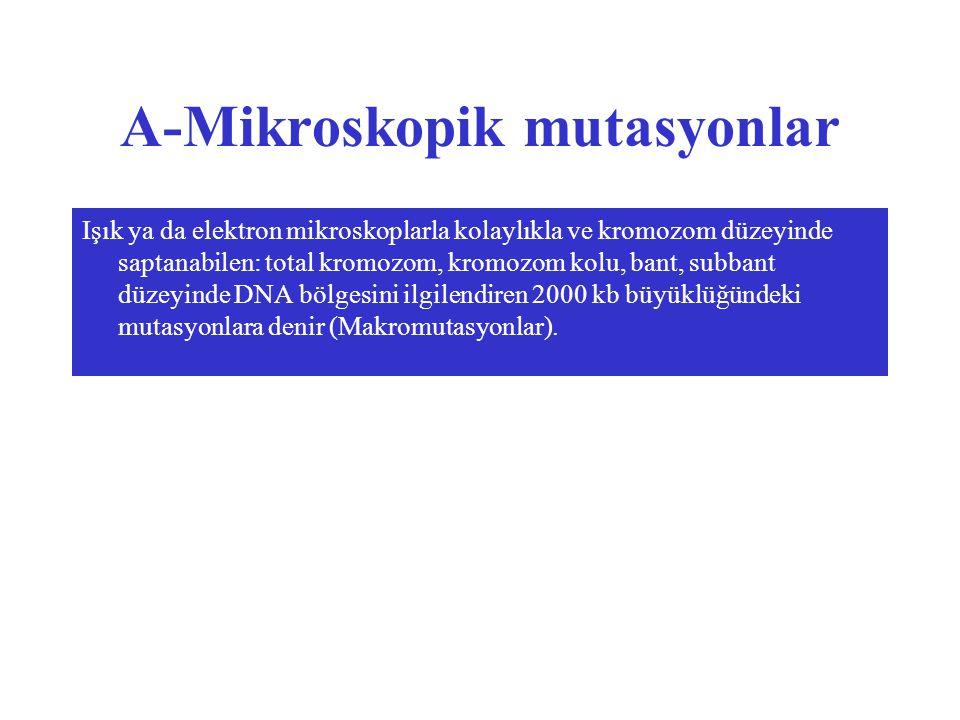 A-Mikroskopik mutasyonlar