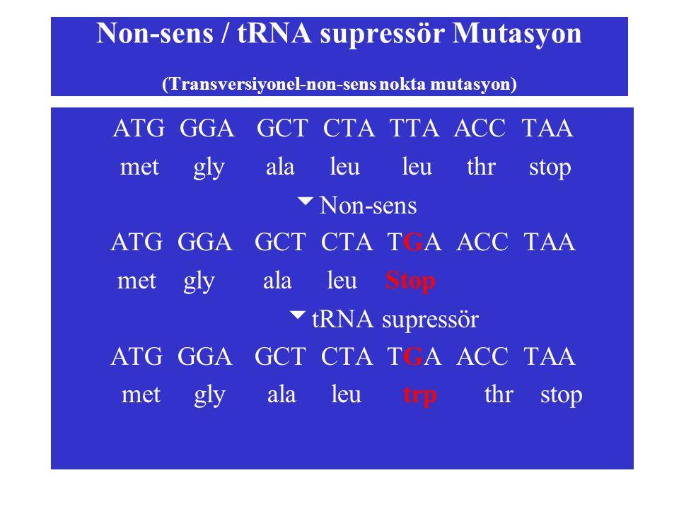 Non-sens / tRNA supressör Mutasyon (Transversiyonel-non-sens nokta mutasyon)
