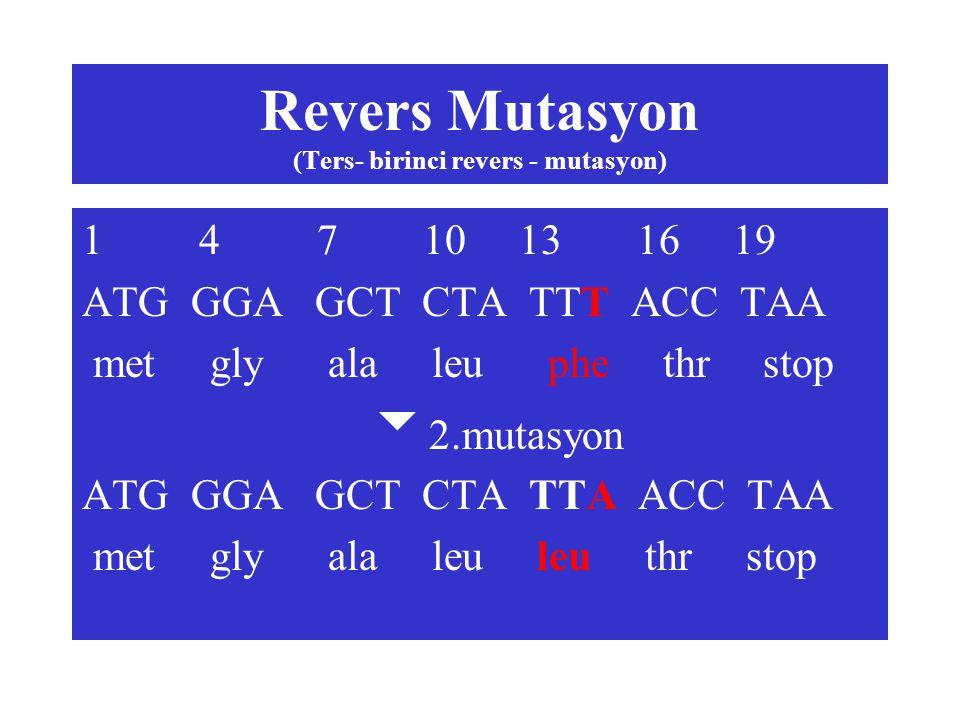 Revers Mutasyon (Ters- birinci revers - mutasyon)