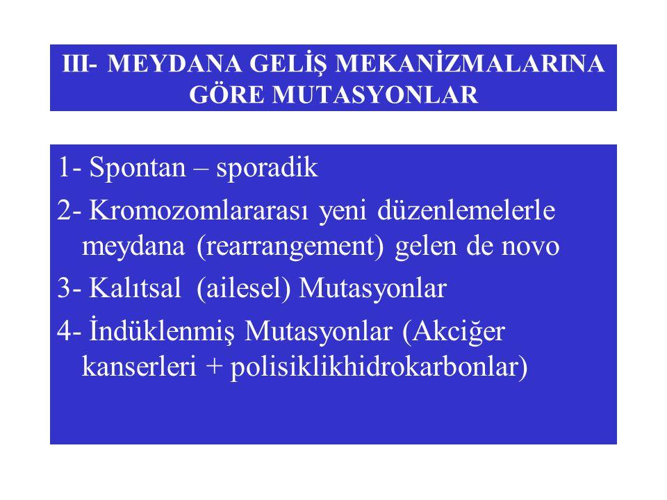 III- MEYDANA GELİŞ MEKANİZMALARINA GÖRE MUTASYONLAR
