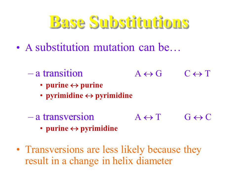 Base Substitutions A substitution mutation can be…