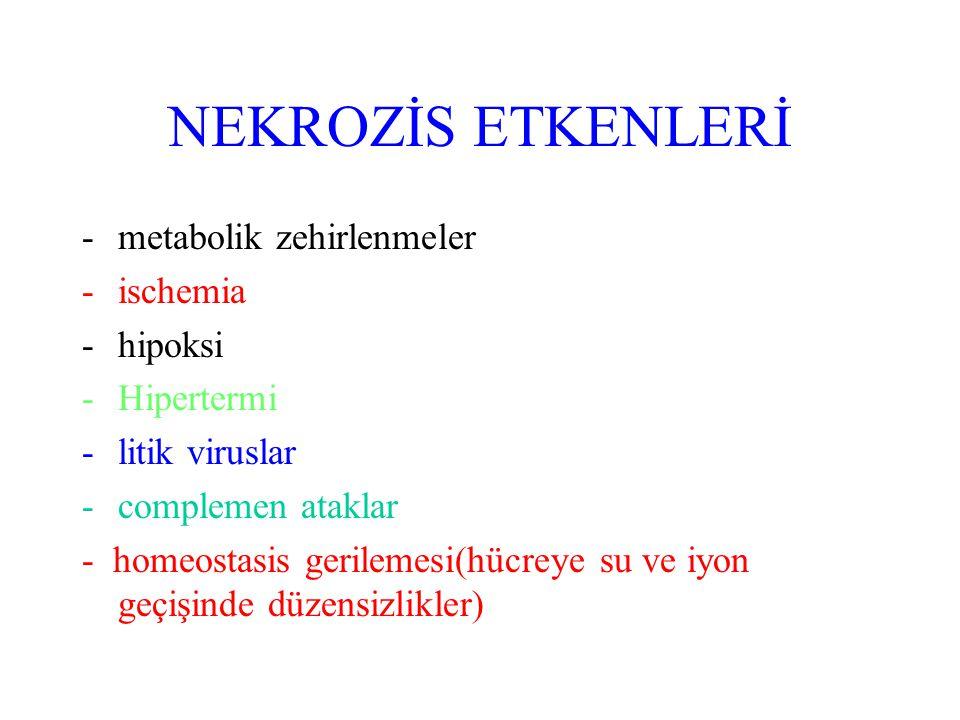 NEKROZİS ETKENLERİ metabolik zehirlenmeler ischemia hipoksi Hipertermi