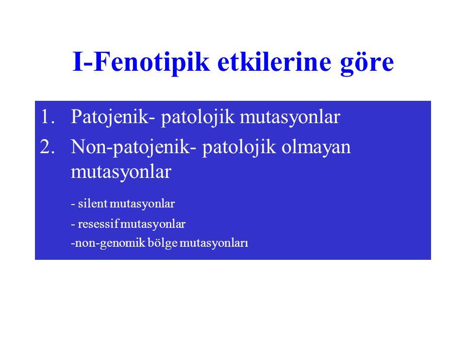 I-Fenotipik etkilerine göre