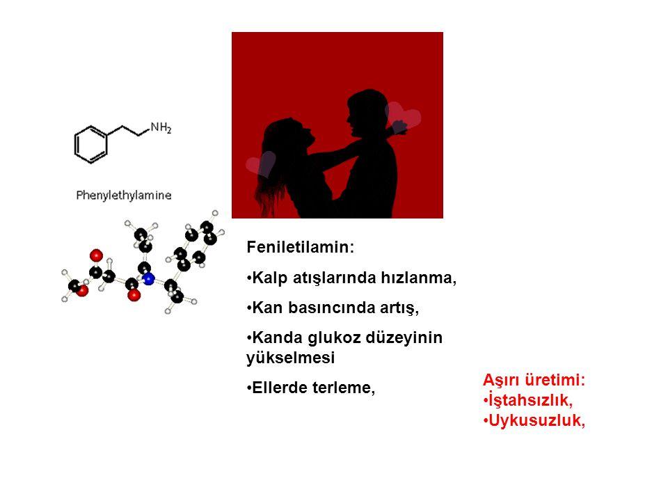Feniletilamin: Kalp atışlarında hızlanma, Kan basıncında artış, Kanda glukoz düzeyinin yükselmesi.