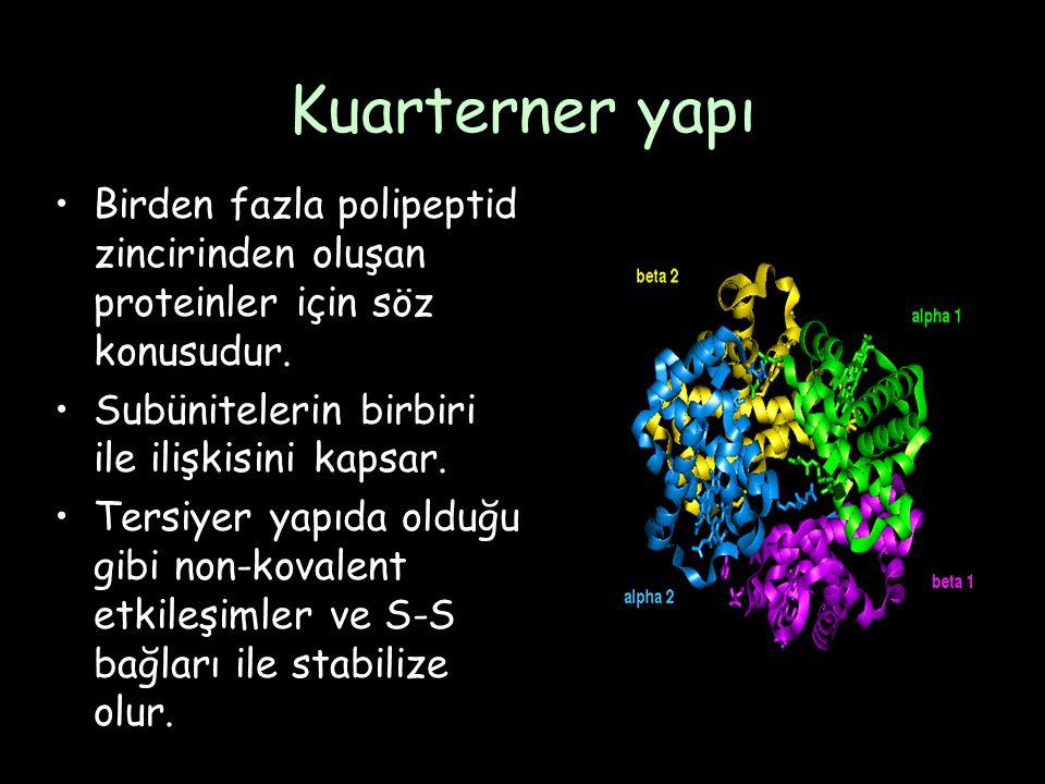 Kuarterner yapı Birden fazla polipeptid zincirinden oluşan proteinler için söz konusudur. Subünitelerin birbiri ile ilişkisini kapsar.