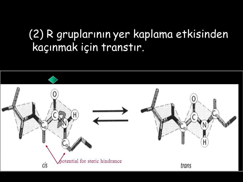 (2) R gruplarının yer kaplama etkisinden kaçınmak için transtır.