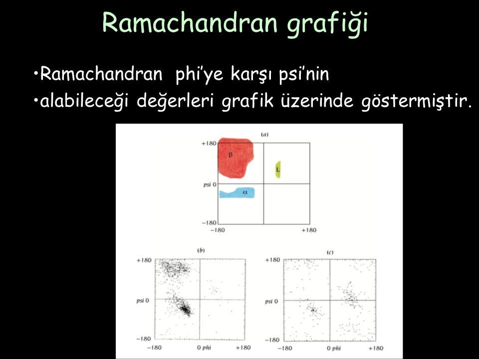 Ramachandran grafiği Ramachandran phi'ye karşı psi'nin