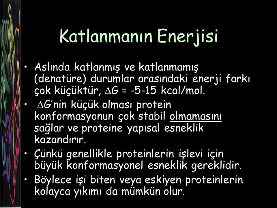 Katlanmanın Enerjisi Aslında katlanmış ve katlanmamış (denatüre) durumlar arasındaki enerji farkı çok küçüktür, DG = -5-15 kcal/mol.