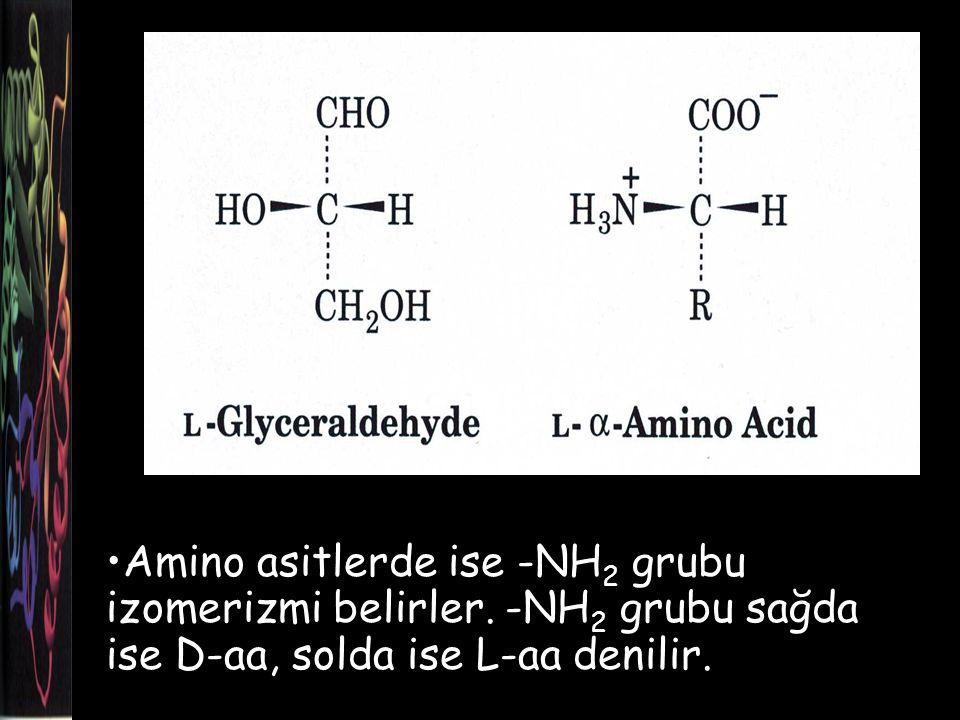 Amino asitlerde ise -NH2 grubu izomerizmi belirler