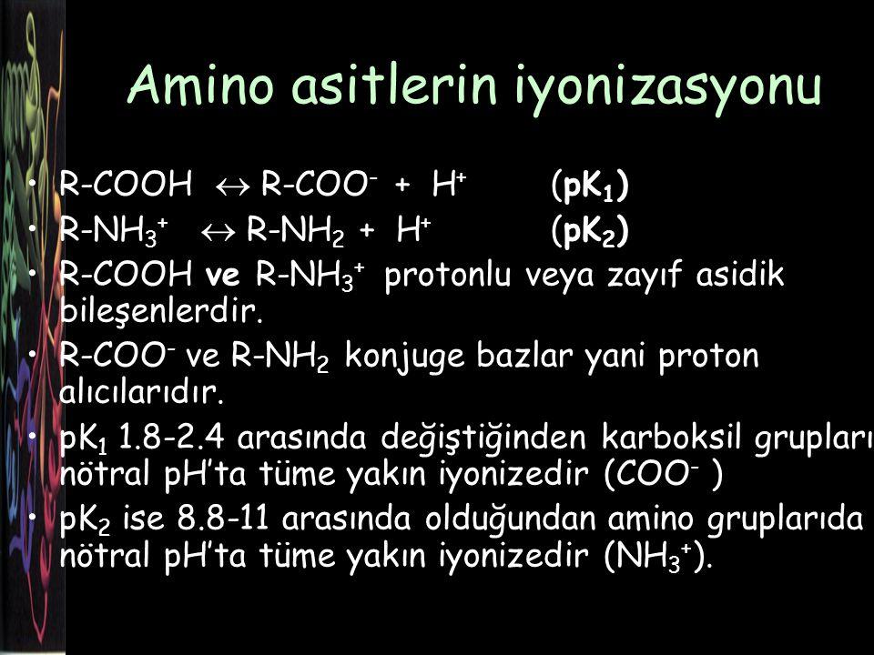 Amino asitlerin iyonizasyonu